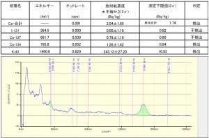図3葉山海岸砂NaI